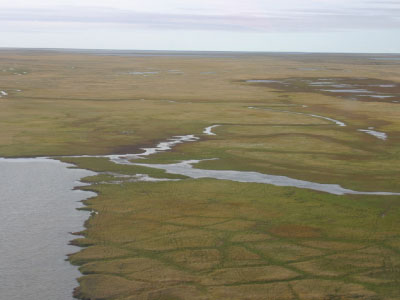 Disappearing lakes in Barrow, Alaska