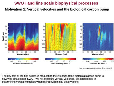 SWOT and Fine-Scale Biophysical Processes