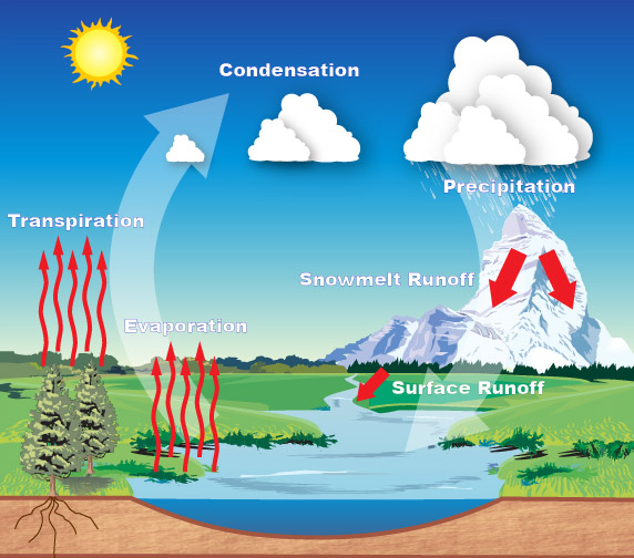 Diagram of Earth's water cycle